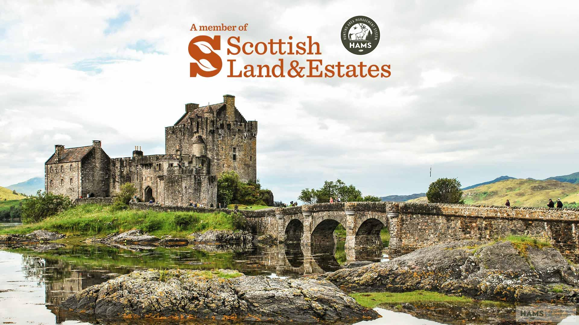 HAMS + Scottish Land & Estates